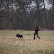 Dog Biatlon